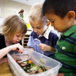 Nature play in preschool