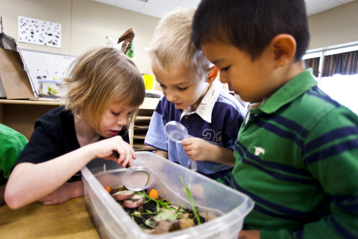 educare tips  giving children opportunities for nature play